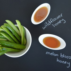 Cucumbers and Honey - Main